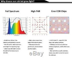 3000W Cree COB LED grow light Full Spectrum Veg Bloom Integrated for Medicals UL