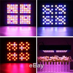 600W LED Grow Light Flower Plant Indoor Hydroponic Greenhouse Growing Tent Box
