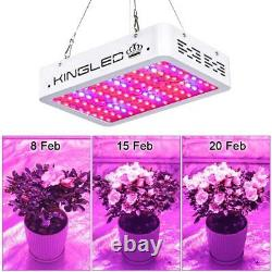 King Plus 1000w LED Grow Light Double Chips Full Spectrum with UV&IR for Gree