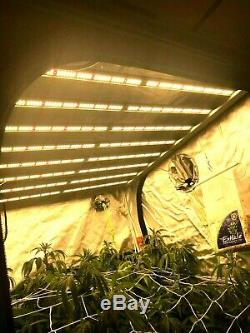 Led 660w High Powered Grow Light For Veg And Ultimate Flowering