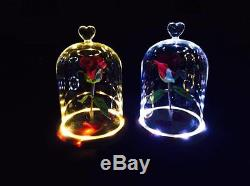 The Beauty And The Beast Enchanted Flower Rose Belle Glass Night Light LED White